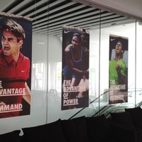 Window Graphic 11- Australian Open Tennis 1