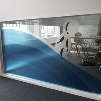 Window Graphics 9 -  AMF Partition Glass 1