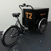 VEHICLE 12 - T2 Trike Wrap 2