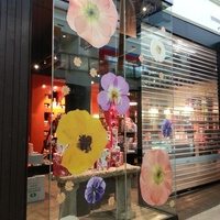 Window Graphic 26 - T2 Tea flowers 2